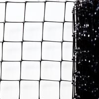 anti-mole-netting
